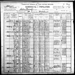 1900-IL Census, District 20, Salem Precinct, Edwards Co, IL