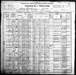 1900-IL Census, West Salem, Salem Precinct, Edwards Co, IL