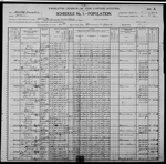 1900-NC Census, District 14, Whites Creek Township, Bladen Co, NC