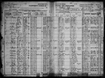 1920-MI Census, Detroit City, Wayne Co, MI